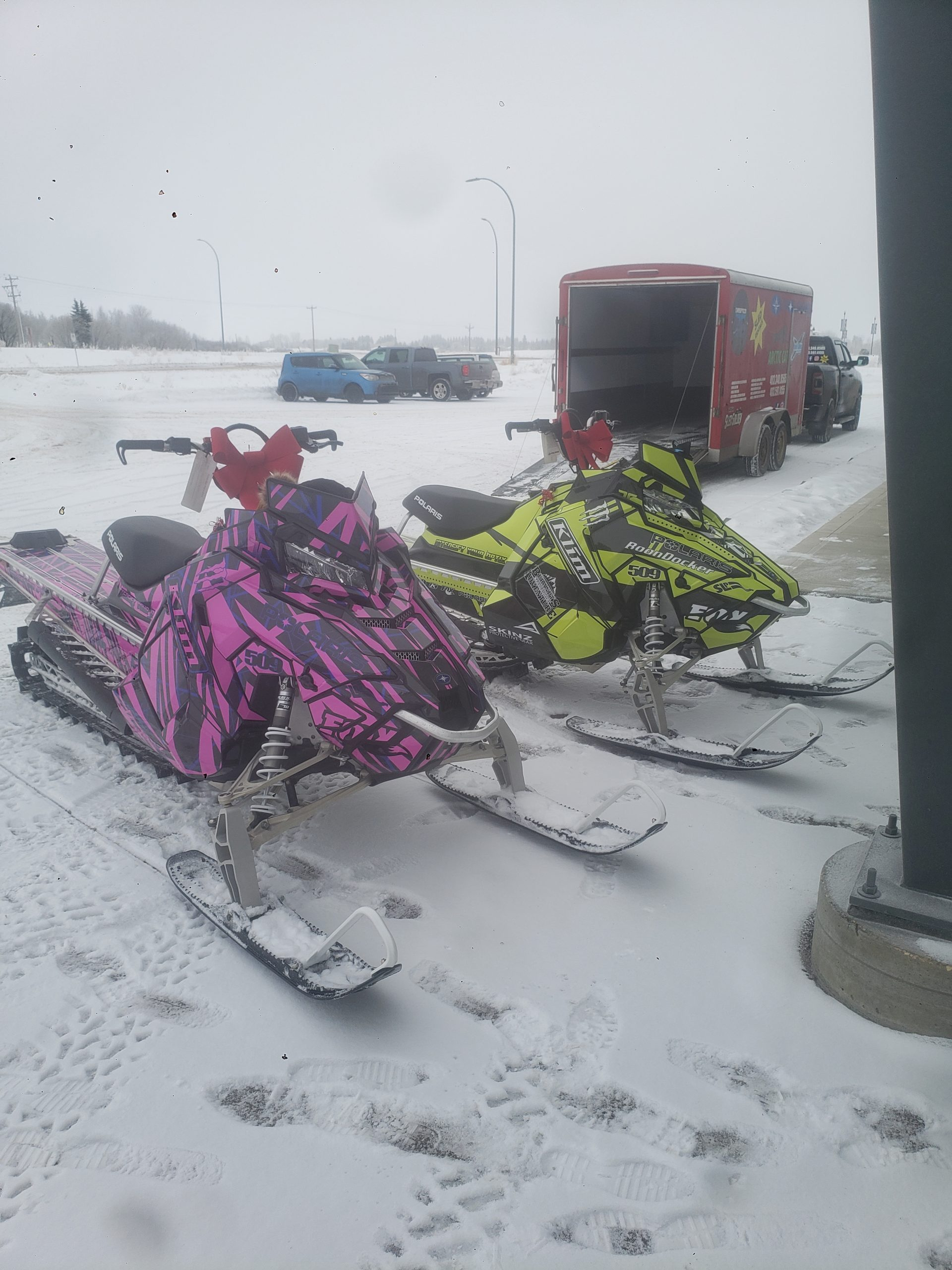 sled wraps red deer